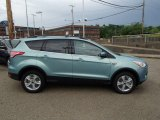 2013 Frosted Glass Metallic Ford Escape SE 1.6L EcoBoost 4WD #81403435