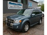 2010 Steel Blue Metallic Ford Escape Limited V6 4WD #81403544