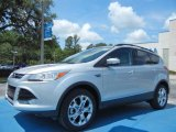 2013 Ingot Silver Metallic Ford Escape SEL 1.6L EcoBoost #81403422