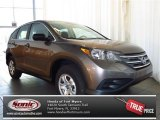 2013 Urban Titanium Metallic Honda CR-V LX #81403317