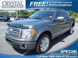 2010 Sterling Grey Metallic Ford F150 Platinum SuperCrew #81455539