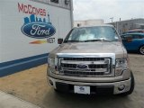 2013 Pale Adobe Metallic Ford F150 XLT SuperCrew #81520030