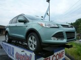 2013 Frosted Glass Metallic Ford Escape SE 1.6L EcoBoost 4WD #81540190