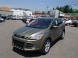 2013 Ginger Ale Metallic Ford Escape SE 1.6L EcoBoost 4WD #81584089