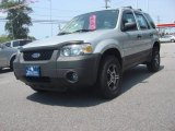 2006 Silver Metallic Ford Escape XLS #81584165