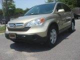 2008 Borrego Beige Metallic Honda CR-V EX-L 4WD #81583615