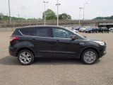 2013 Tuxedo Black Metallic Ford Escape SEL 1.6L EcoBoost 4WD #81634260
