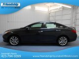2013 Pacific Blue Pearl Hyundai Sonata SE #81684891