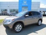 2013 Urban Titanium Metallic Honda CR-V EX AWD #81685328