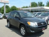 2010 Black Forest Pearl Toyota RAV4 I4 4WD #81685085