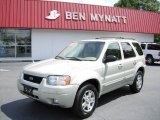 2003 Gold Ash Metallic Ford Escape Limited 4WD #81685506