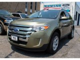 2013 Ginger Ale Metallic Ford Edge SEL AWD #81685406