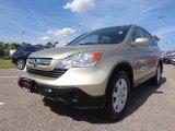 2008 Borrego Beige Metallic Honda CR-V EX-L #81761148