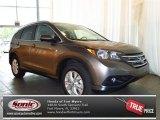 2013 Urban Titanium Metallic Honda CR-V EX-L #81810363