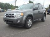 2011 Sterling Grey Metallic Ford Escape XLT V6 #81811180