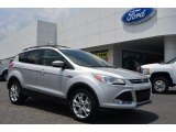 2013 Ingot Silver Metallic Ford Escape SE 2.0L EcoBoost #81810625