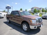 2012 Golden Bronze Metallic Ford F150 XLT SuperCrew 4x4 #81810617