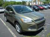 2013 Ginger Ale Metallic Ford Escape SE 1.6L EcoBoost 4WD #81810615