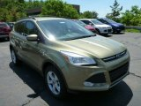 2013 Ginger Ale Metallic Ford Escape SE 1.6L EcoBoost 4WD #81810614