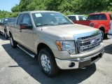 2013 Pale Adobe Metallic Ford F150 XLT SuperCab 4x4 #81810612