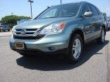2010 Opal Sage Metallic Honda CR-V EX-L #81870388