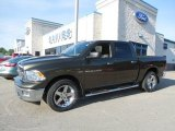 2012 Sagebrush Pearl Dodge Ram 1500 Big Horn Crew Cab 4x4 #81870481