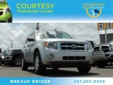 2012 Ingot Silver Metallic Ford Escape XLT 4WD #81870871
