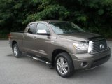 2010 Pyrite Brown Mica Toyota Tundra Limited Double Cab 4x4 #81988116