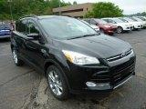 2013 Tuxedo Black Metallic Ford Escape SEL 2.0L EcoBoost 4WD #81987738