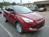 2013 Ruby Red Metallic Ford Escape SEL 2.0L EcoBoost 4WD #81987736
