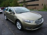 2013 Ginger Ale Metallic Ford Taurus SEL AWD #81987725