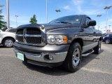 2004 Graphite Metallic Dodge Ram 1500 ST Regular Cab #81987548