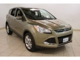 2013 Ginger Ale Metallic Ford Escape SEL 2.0L EcoBoost #81988034