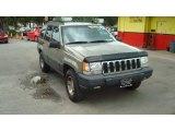1998 Char Gold Satin Glow Jeep Grand Cherokee Laredo #82098606