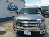 2013 Pale Adobe Metallic Ford F150 XLT SuperCrew #82098210