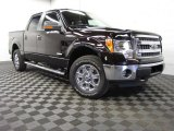 2013 Kodiak Brown Metallic Ford F150 XLT SuperCrew 4x4 #82098704