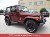 2003 Jeep Wrangler Sienna Pearl