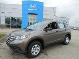 2013 Urban Titanium Metallic Honda CR-V LX AWD #82098789