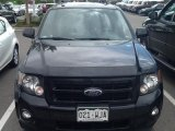 2009 Ford Escape XLT Sport V6 AWD Data, Info and Specs