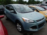 2013 Frosted Glass Metallic Ford Escape SEL 2.0L EcoBoost 4WD #82098157