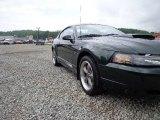 2001 Dark Highland Green Ford Mustang Bullitt Coupe #82098399