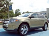 2013 Ginger Ale Metallic Ford Edge SEL #82160998