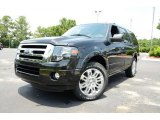 2013 Tuxedo Black Ford Expedition Limited #82161375