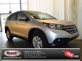 2013 Alabaster Silver Metallic Honda CR-V EX #82215289