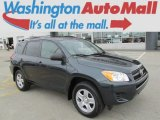2010 Black Forest Pearl Toyota RAV4 I4 4WD #82215470