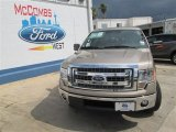 2013 Pale Adobe Metallic Ford F150 XLT SuperCrew #82269271
