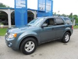 2010 Steel Blue Metallic Ford Escape XLT V6 4WD #82269345