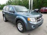 2010 Ford Escape XLT V6 4WD Data, Info and Specs