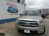 2013 Pale Adobe Metallic Ford F150 XLT SuperCab #82352640