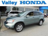 2010 Opal Sage Metallic Honda CR-V EX-L AWD #82360142